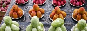 figa-kaktusowa-owoc-opuncji-co-warto-wiedziec_412678